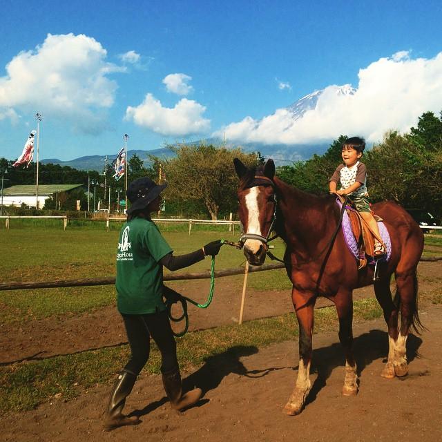 馬、富士山、鯉のぼり