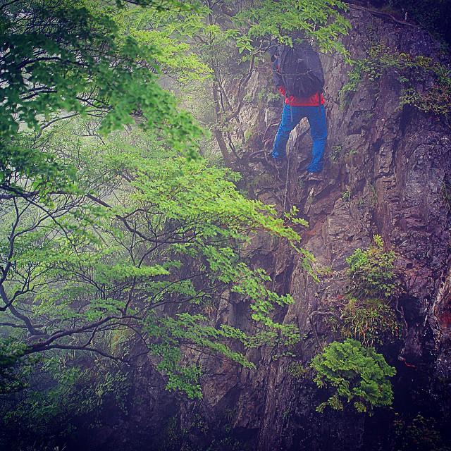 垂直な崖を下降 day03%0A#大峯奥駈修験道 #fastpacking #世界遺産 #worldheritage